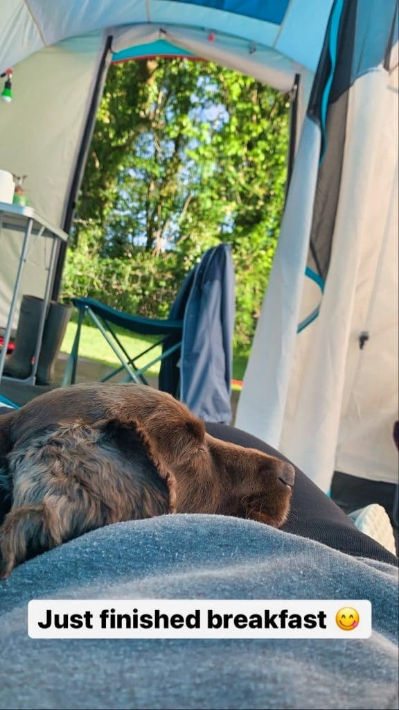 camping with dog roseanna sunley
